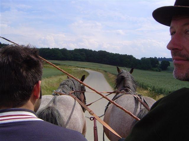 Mit 2 Rheinischen Kaltblutpferden unterwegs
