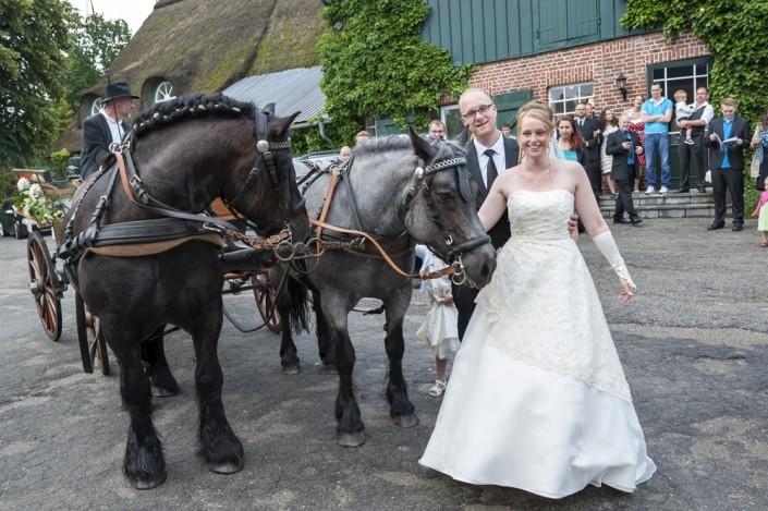 Hochzeitskutsche am 05. Juni 2014
